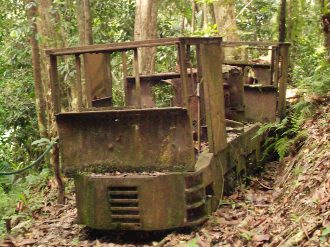 Two lost locos in the Palau jungle.