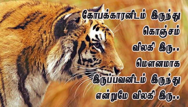 Silent anger quotes in Tamil - Lovekavithai.com