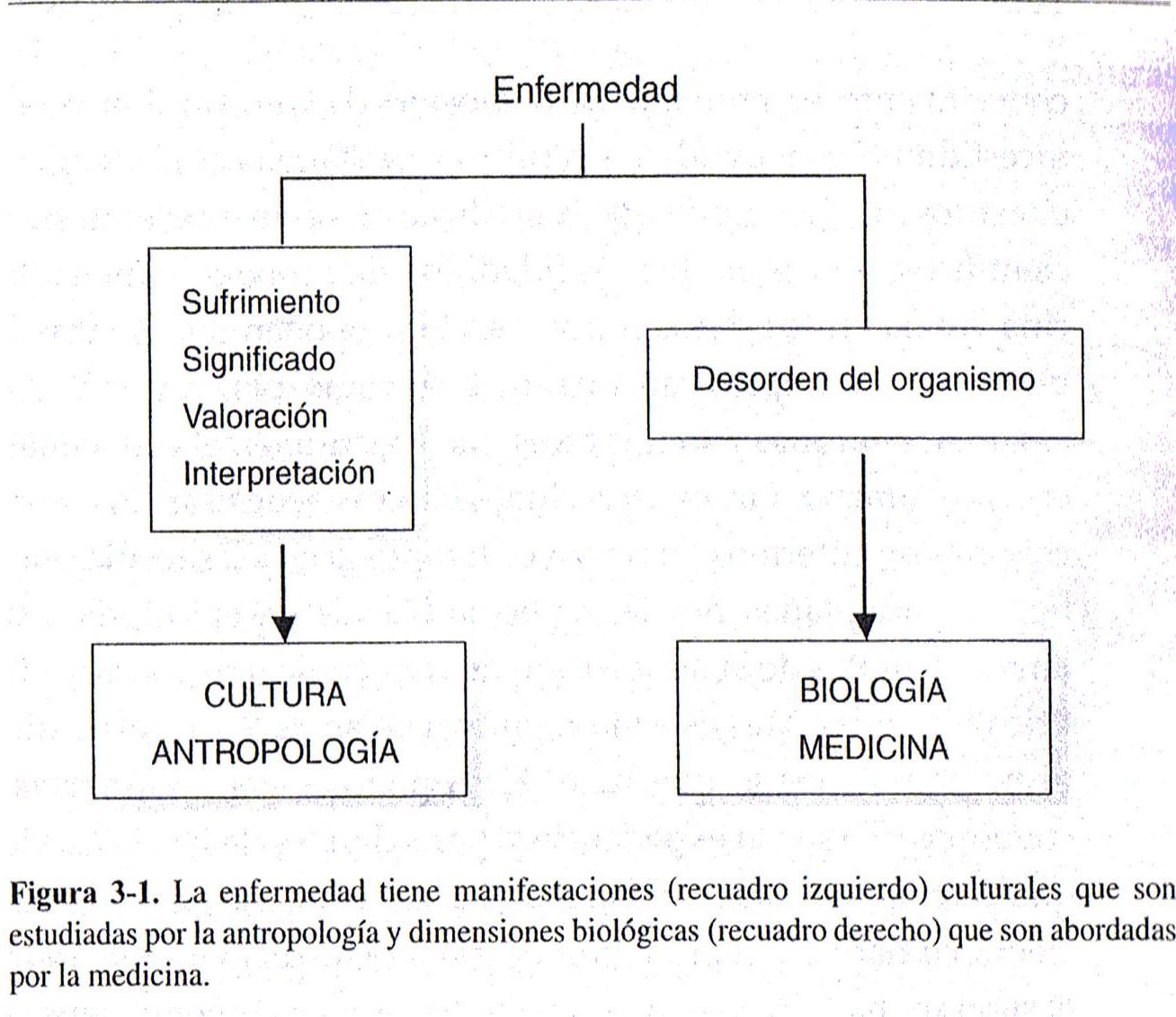 enfermedad médica significado