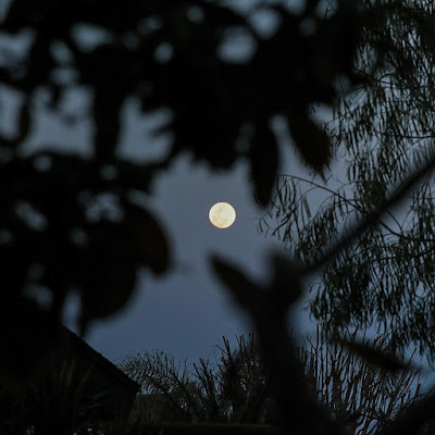 A view of the full moon in Orange County California