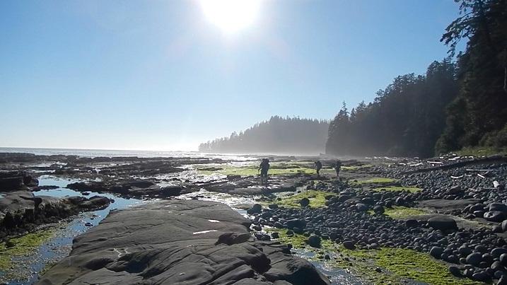 West Coast Trail, Tempat Terbaik Melihat Keindahan Kanada