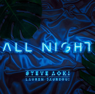Steve Aoki All Night