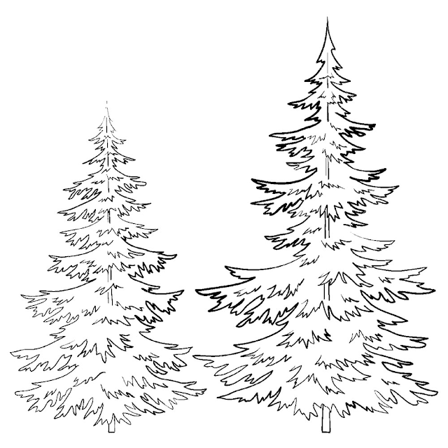 Gambar Mewarnai Pohon Cemara - 10