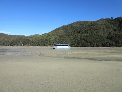 Torrent Bay, Parque Nacional Abel Tasman, Nueva Zelanda