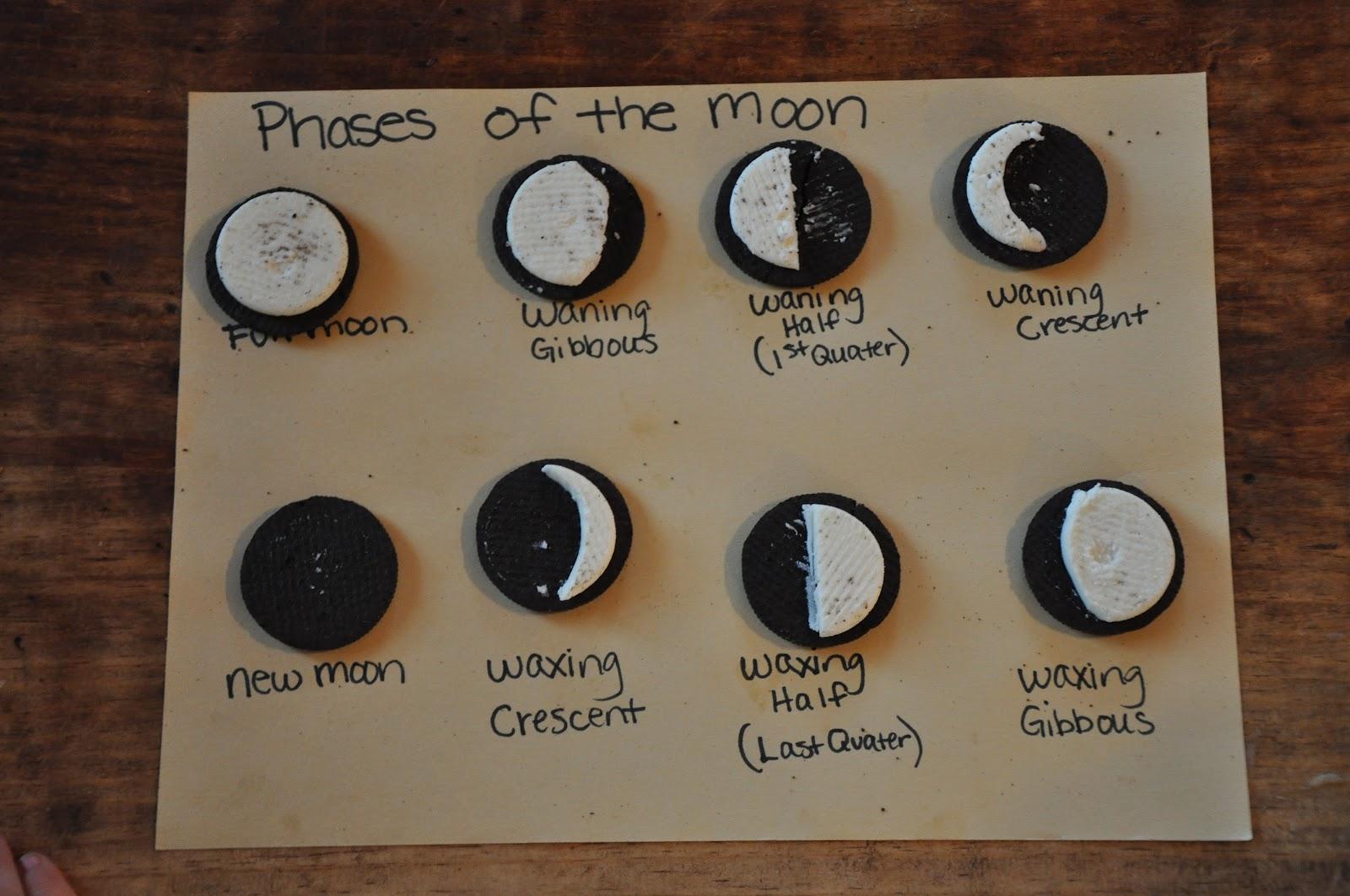 Oreo Moon Phases Project Becausehegavespot