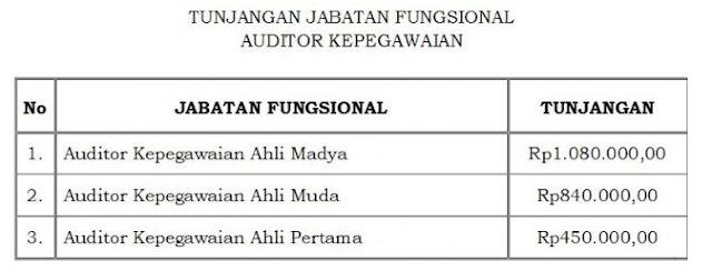 Inilah Besaran Tunjangan Fungsional PNS Auditor Kepegawaian