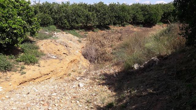 Ρέμα Αγίου Γεωργίου στο Αργολικό: Όλα στον... αχόρταγο