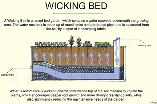 wickingbeddiagram-credit-leaf-ninjas jpg