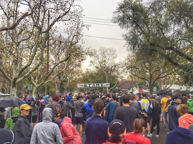 Davis Turkey Trot 5K start line