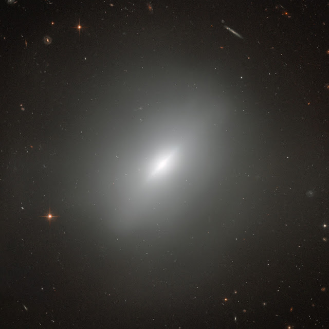 Elliptical Galaxy NGC 3610