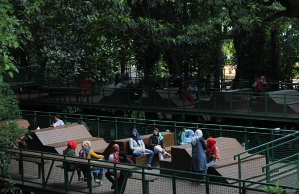 forest walk hutan kota babakan siliwangi bandung