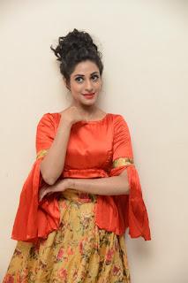 Actress Iraa Stills IN Floral Skirt at Vaadu Veedu O Kalpana Audio Launch  0003.jpg