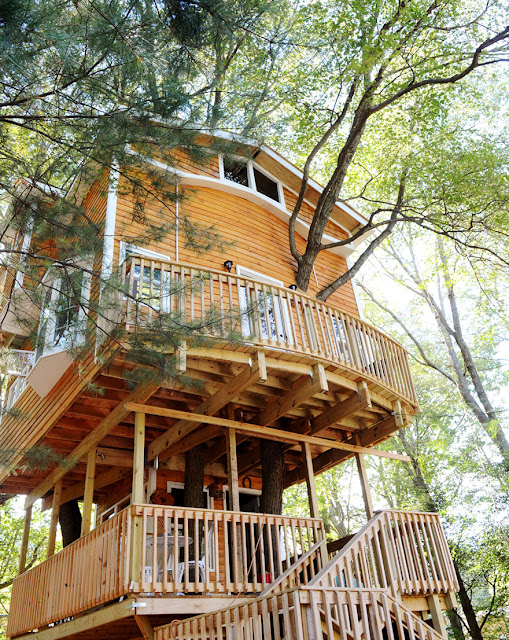 This Grandpa Built A 3 Story Treehouse For His Grandkids