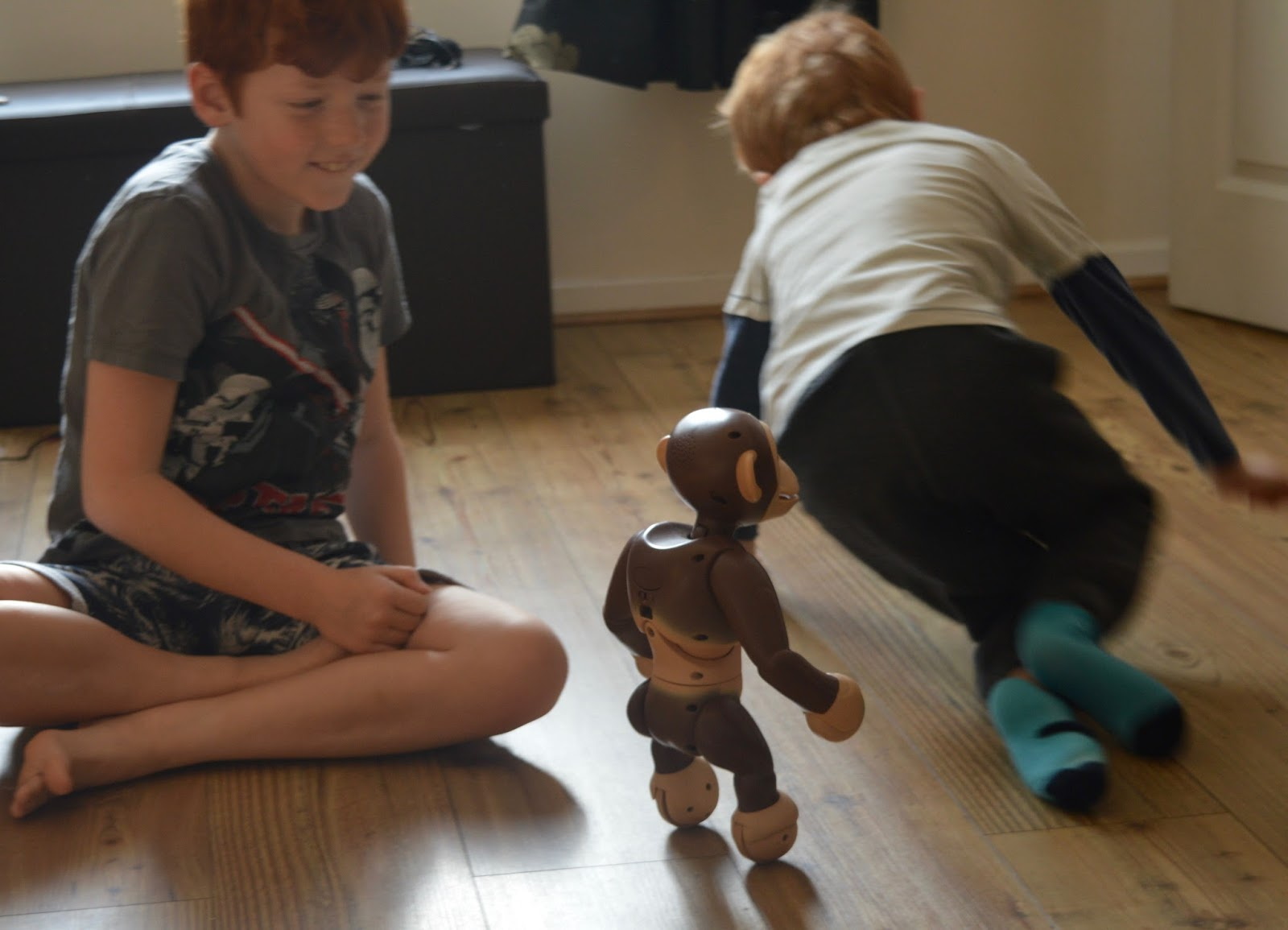 Zoomer Chimp Review |
