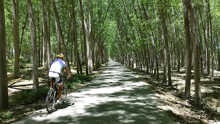 Cycling around Granada and visit the Spanish countryside outside the city