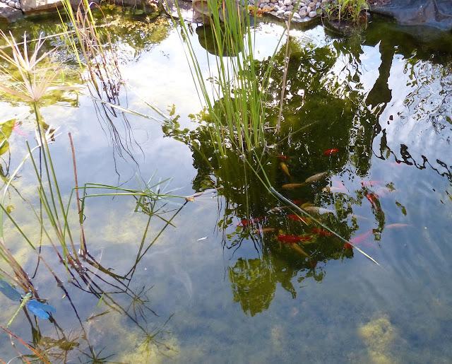 http://jardin-des-mots.eklablog.com/