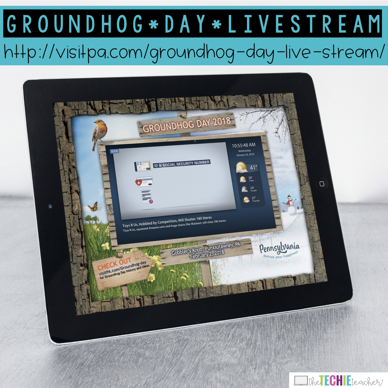Groundhog Day Livestream 2018