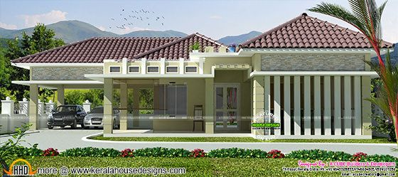 Modern sloping roof 1800 square feet home