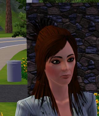 Adventures with Sims 3: Family Bios from Sunset Valley