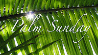 #ministryinmotionchurch #PalmSunday