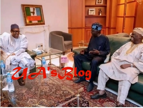 Tinubu speaks after crucial meeting with President Buhari in Aso Rock