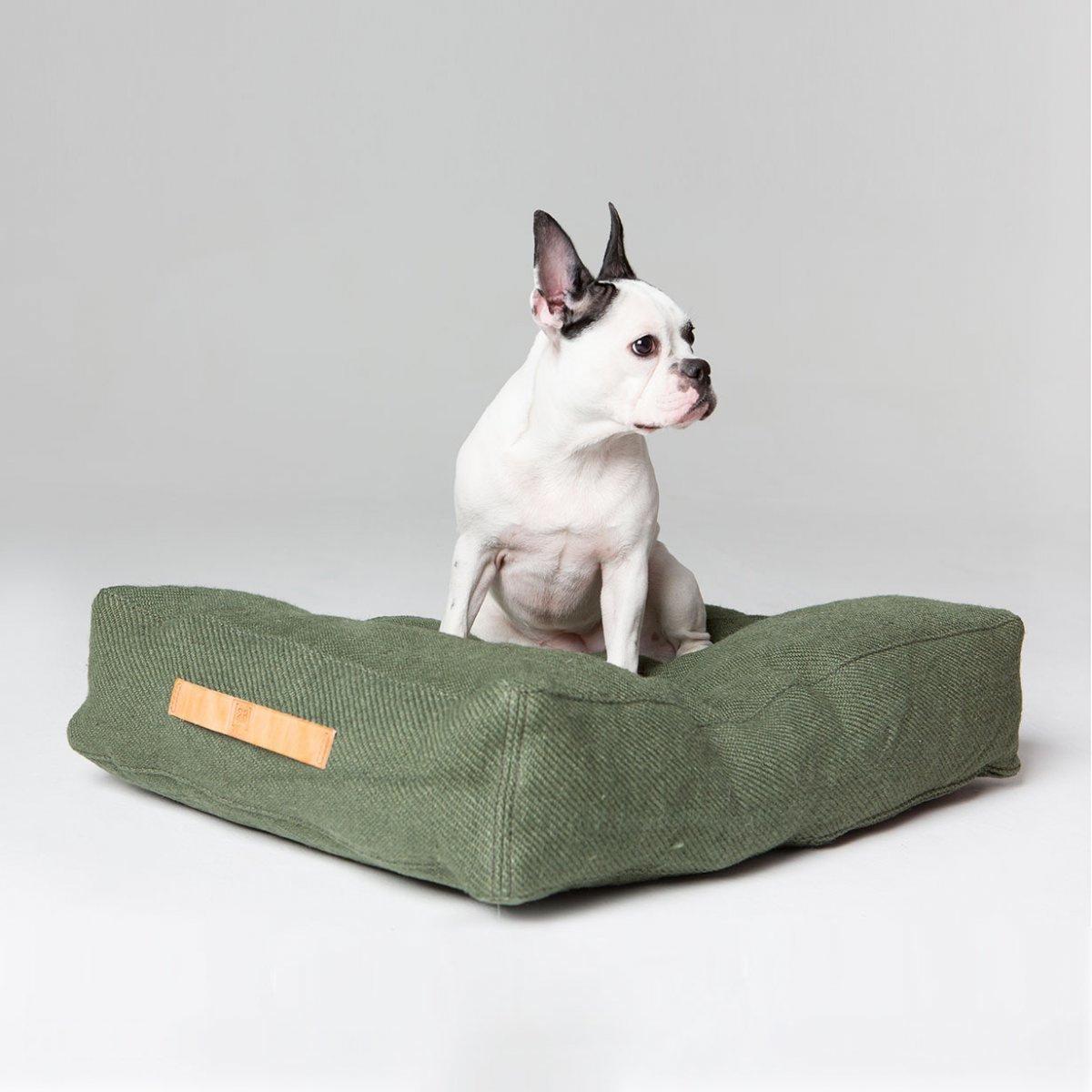 2.8 attenti al cane cuscino per cani grande