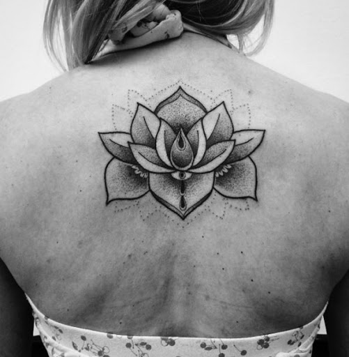 Este dotwork flor de lótus costas