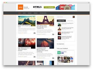 Playbook wordpress free theme