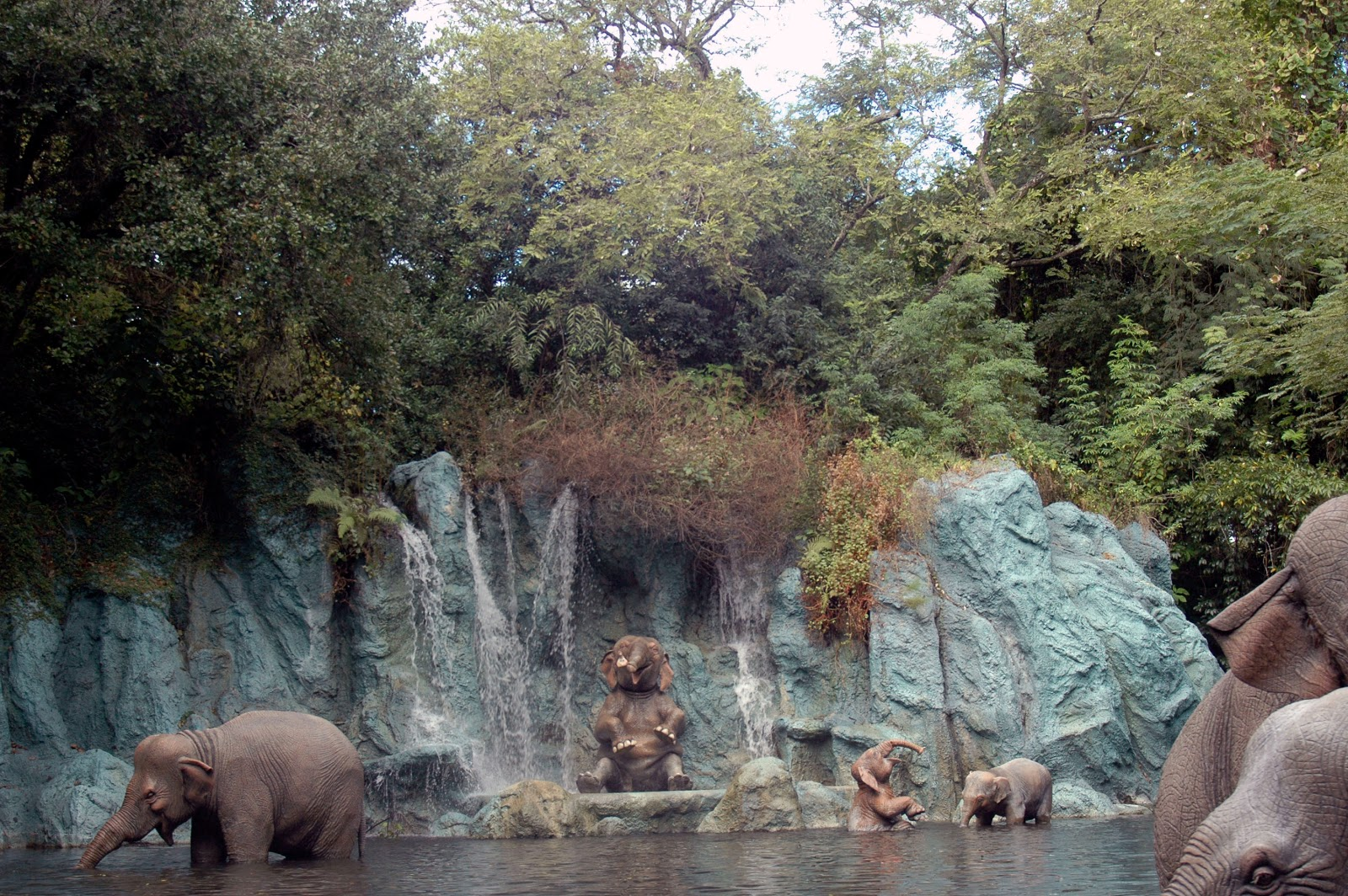 Smile of The Day: Favorite Jungle Cruise jokes - Disney Diary