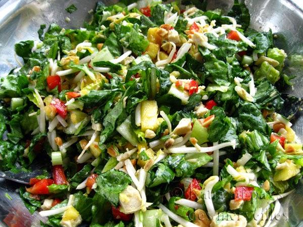 katia au pays des merveilles 16 recettes de salades repas. Black Bedroom Furniture Sets. Home Design Ideas