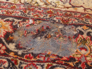 Rug Master Moth Damage And Rug Cleaning In Los Angeles