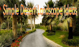 simple-desert-landscape-ideas
