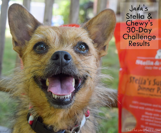 Jada's Stella & Chewy's 30-Day Challenge Results