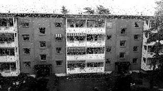 8814f91d Rain Man | Torgnyland