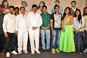 Ameerpetlo audio success meet photos-thumbnail-3