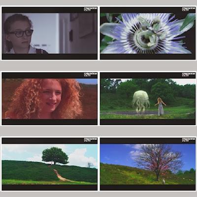 Sander van Doorn - Neon (2013) HD 1080p Free Download