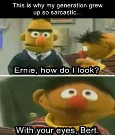 why my generation is sarcastic, ernie how do I look