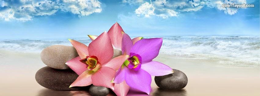 Pinterest Desktop Wallpaper Lotus Quote Zen Relaxation Backgrounds Zen Amp Peace Facebook Cover Pics
