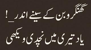 Gungharo ban kay seenay andar Yaad teri mein nachdi wekhi Urdu Poetry Lovers Sad Poetry, 2 line Urdu Poetry,