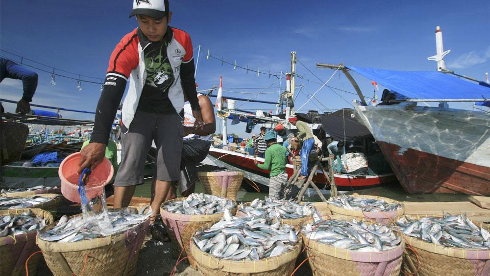 https://www.pjtkiresmi.com/2016/07/lowongan-kerja-nelayan-taiwan-tki.html