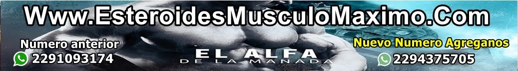 Musculo Musculo