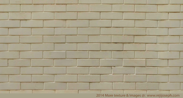 Bricks Wall Texture 00005