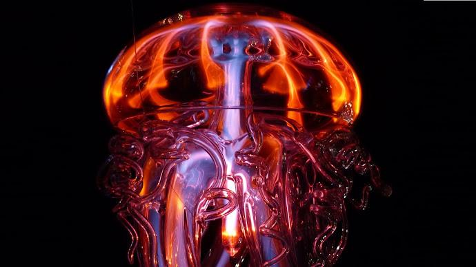 Wallpaper: Jellyfish Hot Light Phenomenon