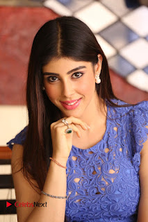 Actress Aditi Singh  Pictures in Short Dress at Movie Interview  0120.JPG