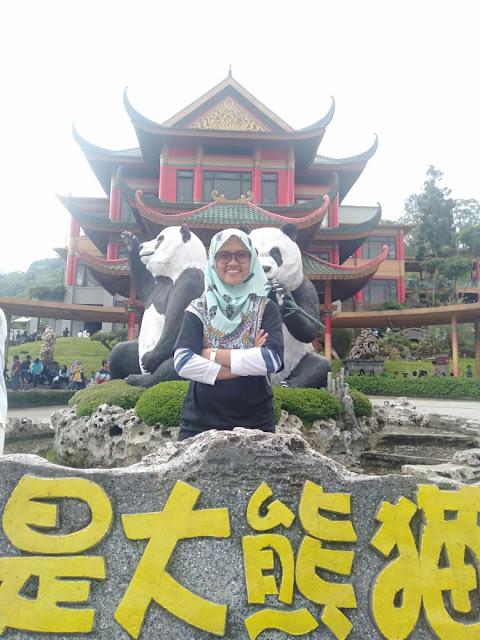 giant panda taman safari cisarua bogor