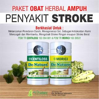 obat stroke, obat herbal stroke, obat stroke de nature, obat stroke alami