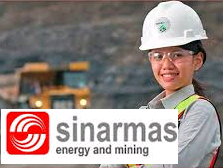 Lowongan Kerja ODP IT Sinarmas Energy and Mining Januari 2017 (Fresh Graduate/ Berpengalaman)