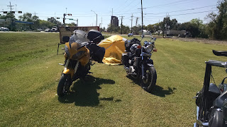 Bumblebee and Hades parked on the lawn of Beaux Jangles