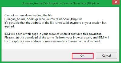 Cara Mengatasi File Download Pada IDM Tidak Bisa di Resume 21