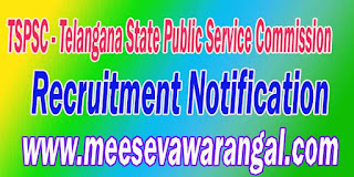 TSPSC AEO Recruitment Notification 2016 Online Application www.tspsc.gov.in 1000 jobs